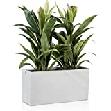 Vaso per piante Fioriera Vaso per fiori VISIO in fibra di vetro - Colore: grigio, terrazzo