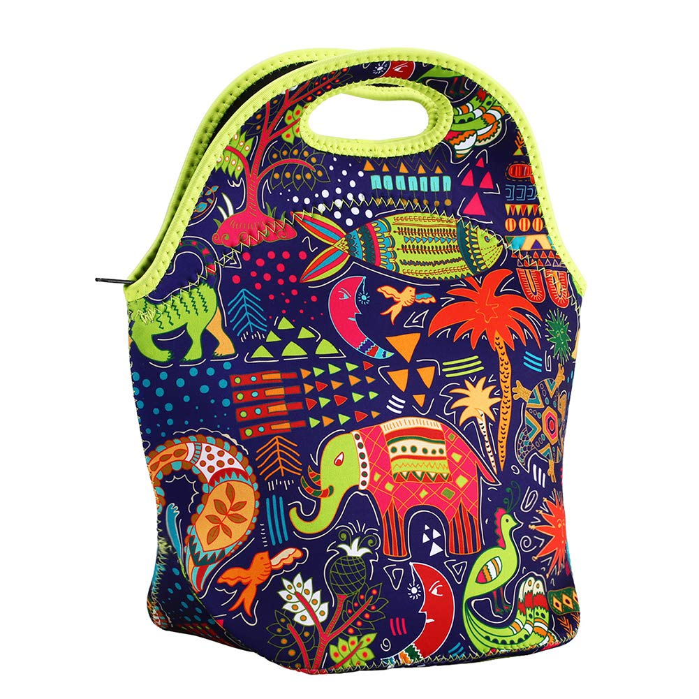 YXTY Lightweight Insulated Neoprene Lunch Tote Bag for Women Work Outdoor Picnic-Colorful Paisley