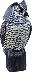 AndBird Horned Owl Decoy with Rotating Head Rotating Natural Enemy Scarecrow Deterrent Crow Bird Control Repellents