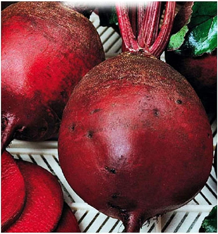Semillas de remolacha vegetal Detroit 2 - vegetales - beta vulgaris - aproximadamente 350 semillas - las mejores semillas de plantas - flores - frutas raras - remolachas - idea de regalo original