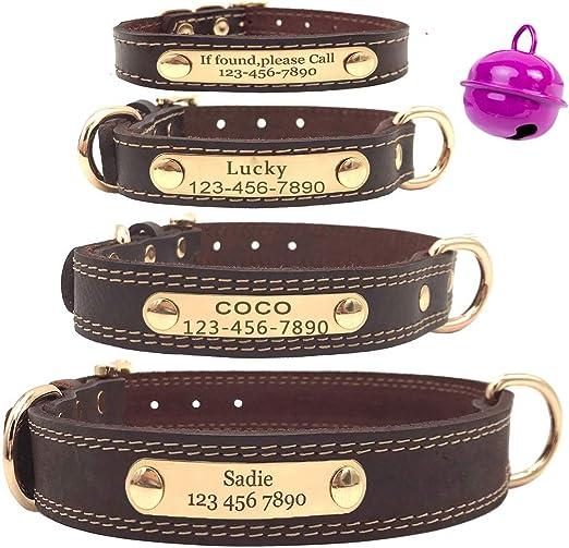 Mihqy Collar de Perro de Cuero Personalizado,Placa de ...