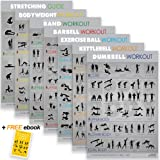 "7 Exercise Workout Gym Posters - 16.5 x 28"" UV Gloss Laminated Fitness Charts. Made in USA"