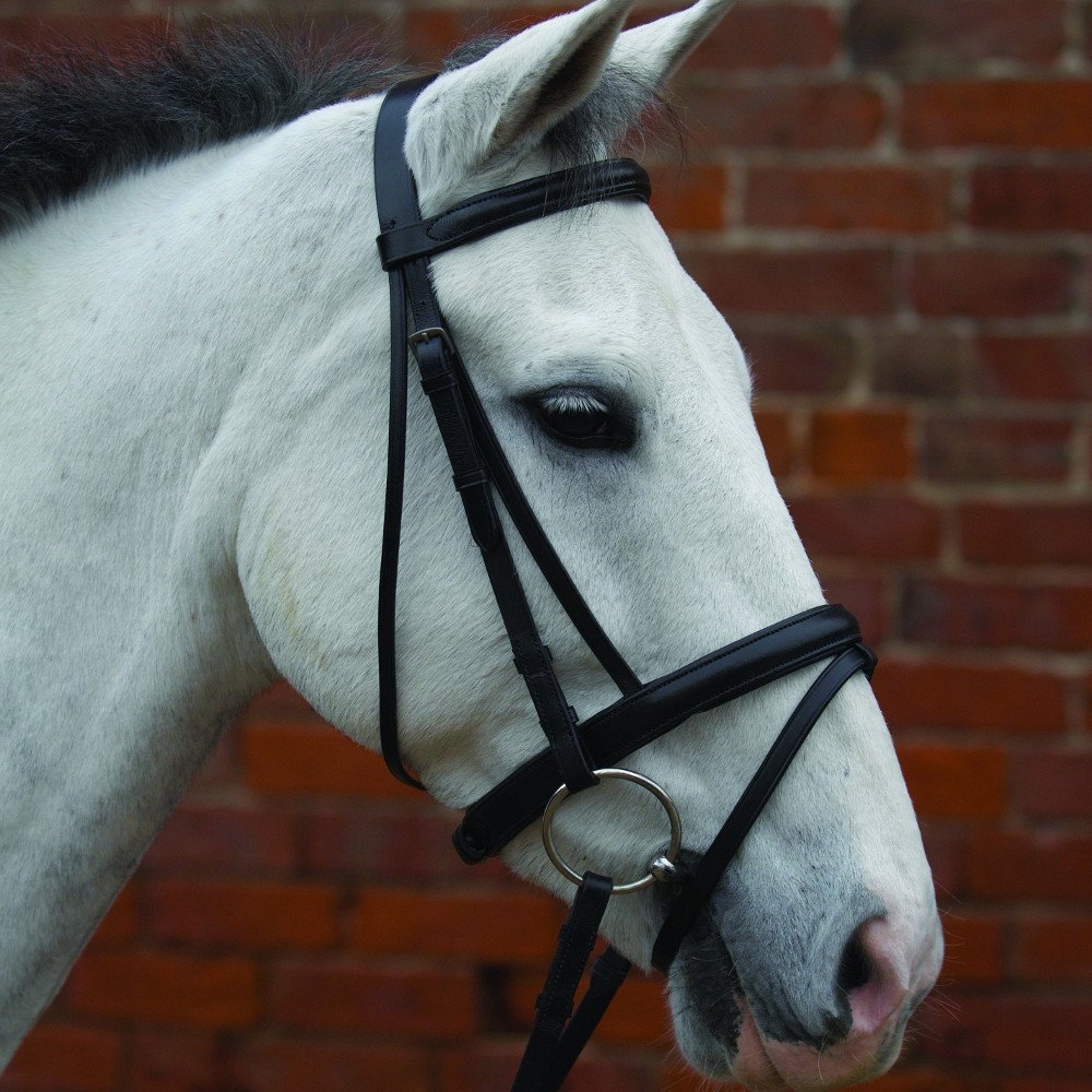 Hy Padded Drop Nose Band
