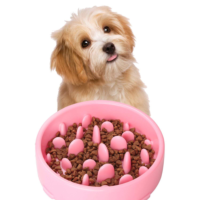 Azul Tineer Perro Lento Alimentador Bowl de Goma Antideslizante Fun Feeding Taz/ón Laberinto Slow Comer Interactivo alimentador Inflar Parada para Peque/ño Mediano Perros Grandes