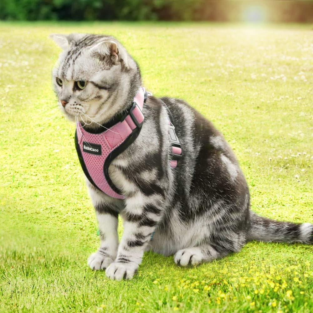 Rabbitgoo Mini Arn/és Gatos Arn/és Antitirones Perros Peque/ños Color Negro Chaleco C/ómodo para Mascotas Peque/ñas Ropa Gatos XXS Tama/ño M/ás Peque/ño