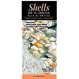 Shells of Florida-Gulf of Mexico: A Beachcomber's Guide to Coastal Areas
