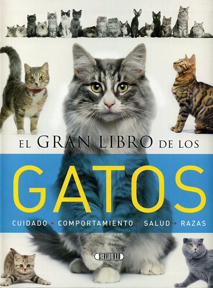 El gran libro de los gatos: Amazon.es: Equipo de Servilibro ...