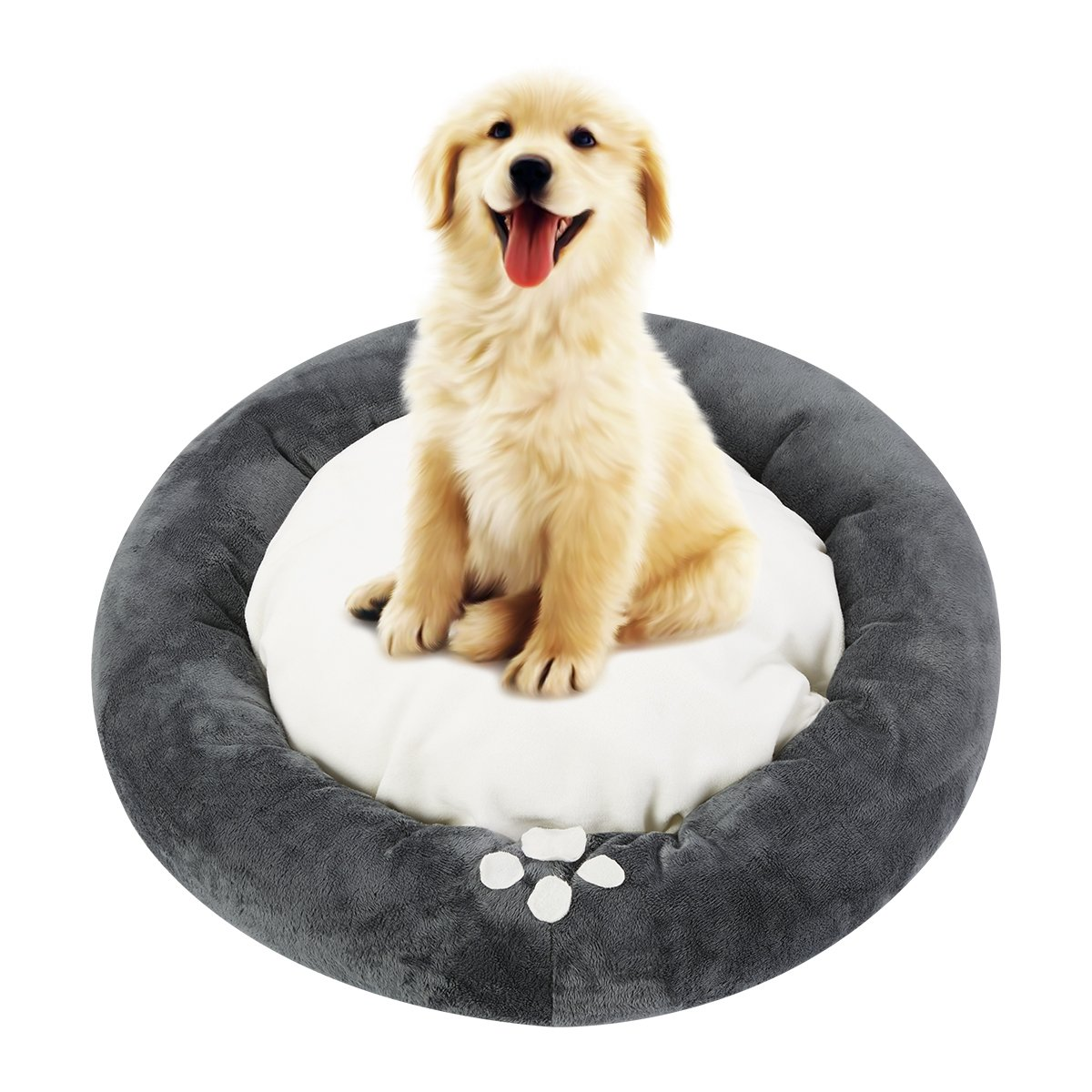any dog would be lucky to have this pet bed!!