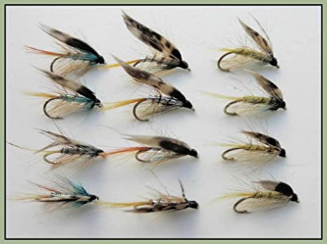 For Fly Fishing Invicta Wet Flies Mixed Size 10 to 16 12 Pack Silver Invicta