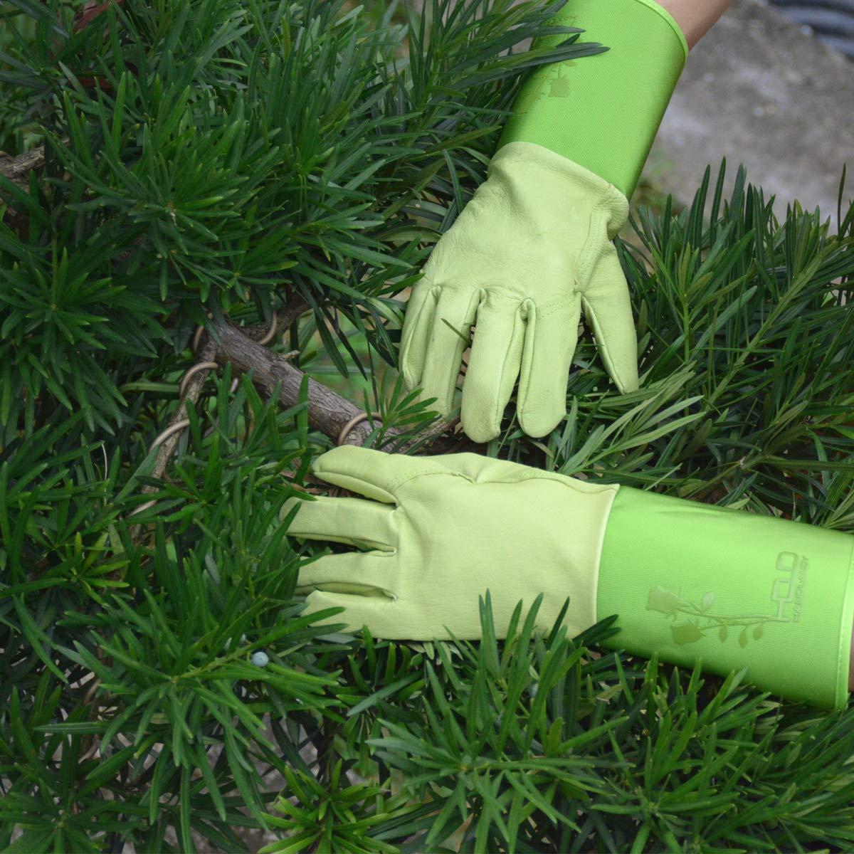 Guanti professionali da giardinaggio per potatura di rose M guanti da donna con durevole spessore Piskin e a prova di spada e taglio con protezione lungo avambraccio 1 Green