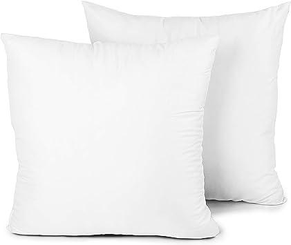 Edow Throw Pillow Insert Set Of 2 Down Alternative Polyester Square Form Decorative Pillow Cushion Sham Stuffer White 18x18