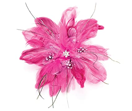 Amazon.com  Lillian Rose Hot Pink Feather Fascinator Hair ... 62364f13808