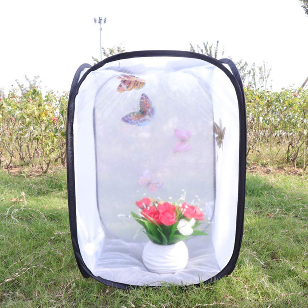 FC Fancy Insect and Butterfly Habitat Cage, Collapsible Insect Mesh Cage Terrarium, 11.8/23.6/35.4/70.9 Inches Tall (23.623.670.9in)