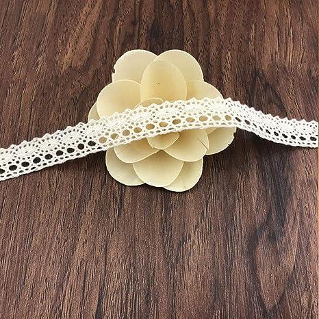 DAHI - Cinta de encaje blanca de 26 metros de algodón decorativa ...