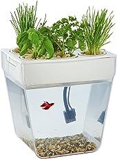 Amazon Com Fish Amp Aquatic Pets Pet Supplies Aquarium D 195