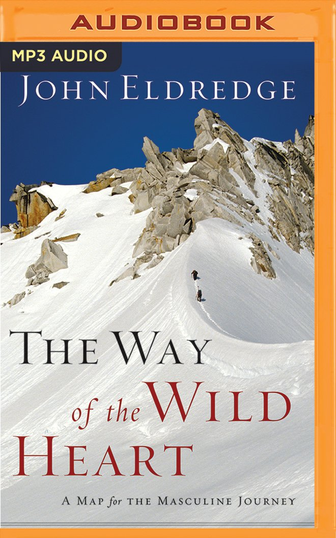 The Way of the Wild Heart: A Map for the Masculine Journey ebook