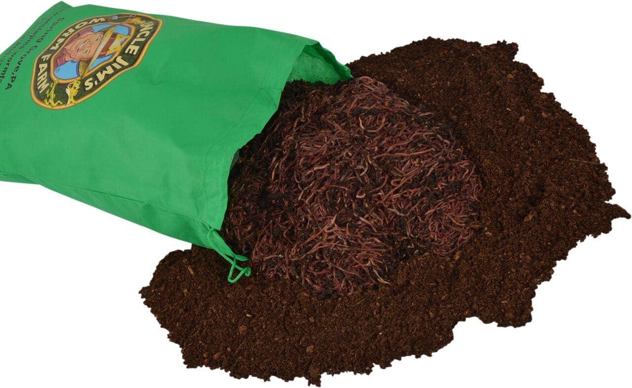 Amazon.com: Uncle Jim granja de gusanos. Incluye 1000 ...