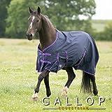 Gallop Lite-Weight Trojan Turnout Rug - Navy/Purple