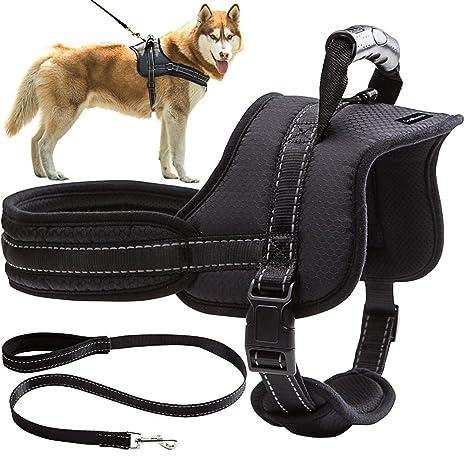 Arnés para perro sin tirones, acolchado, ajustable, control de comodidad