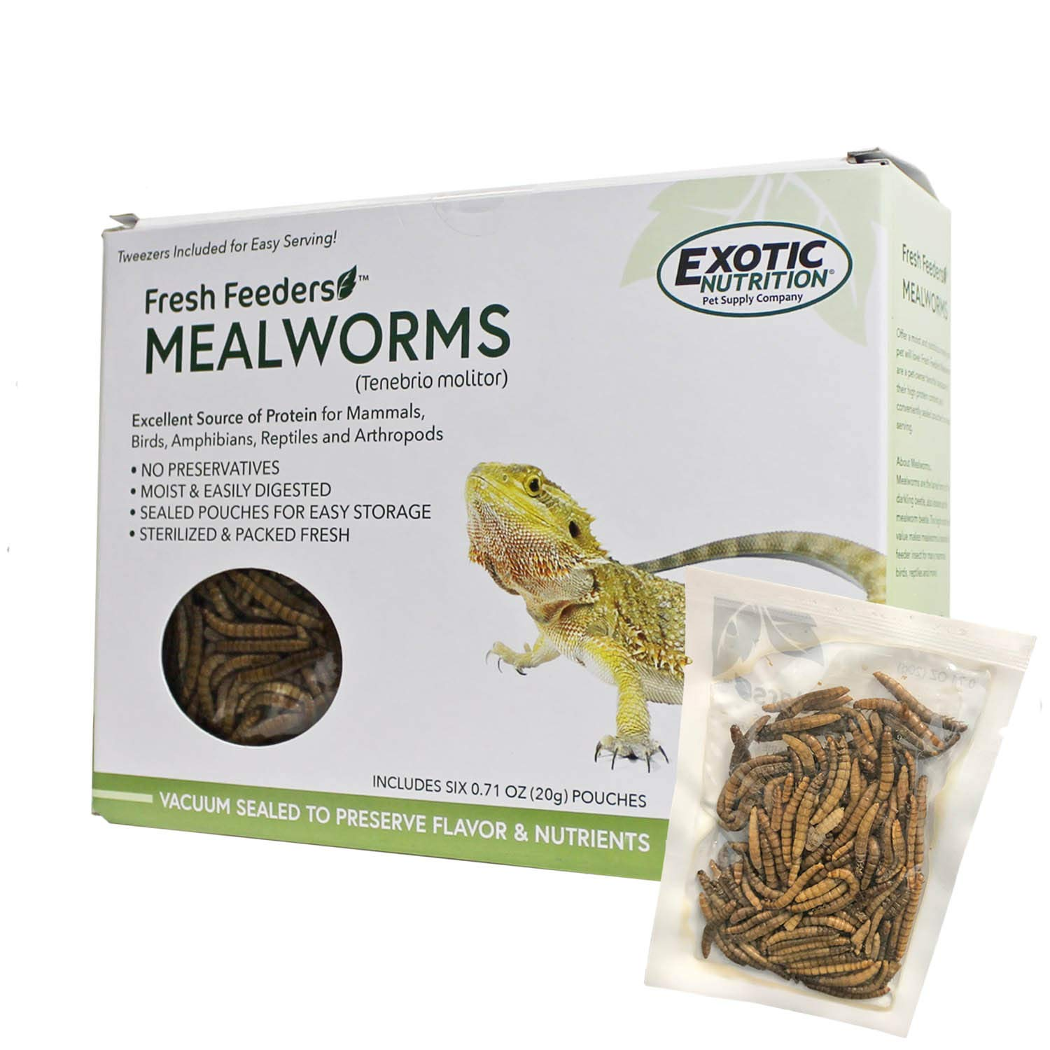 Fresh Feeders (Mealworms) - All Natural High Protein Insect Treat - Single Serving Pouches - Chickens, Wild Birds, Hedgehogs, Bluebirds, Reptiles, Sugar Gliders, Opossums, Skunks, Lizards by Exotic Nutrition