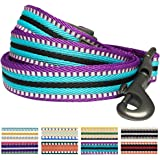 Blueberry Pet 8 Colors 3M Reflective Multi-colored Stripe Dog Leash, 6 Colors Classic Staple Striped Genuine Leather and Polyester Webbing Dog Leash, Matching Collar & Harness Available Separately