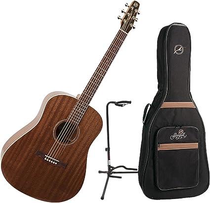 Godin guitarras 038916 Bundle – Guitarra electroacústica: Amazon ...
