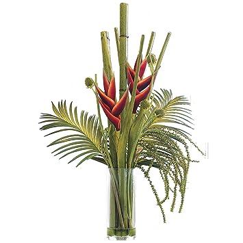 Amazon De Bloom Grosse Tropical Heliconia Bambus Stiele Ferns
