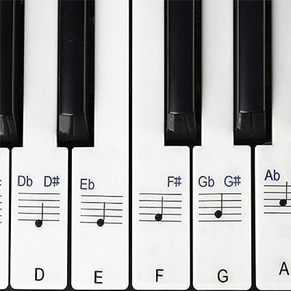 Pegatinas para piano / teclados, 49,61,76,88 Juego completo de