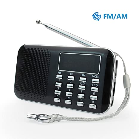 PRUNUS L-218AM, Radio AM/FM con micro TF card USB MP3,