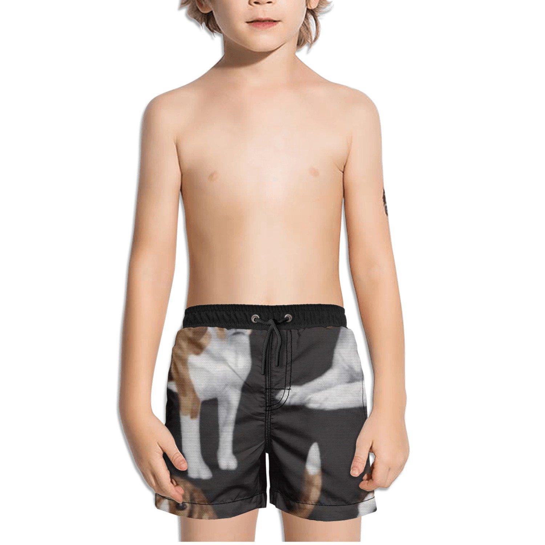 Ouxioaz Boys Swim Trunk Beagles Beagle Beach Board Shorts