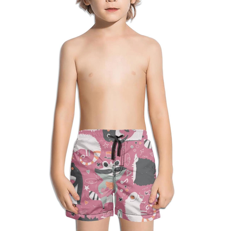 Ouxioaz Boys' Swim Trunk Cute Animals Hedgehog Love Beach Board Shorts