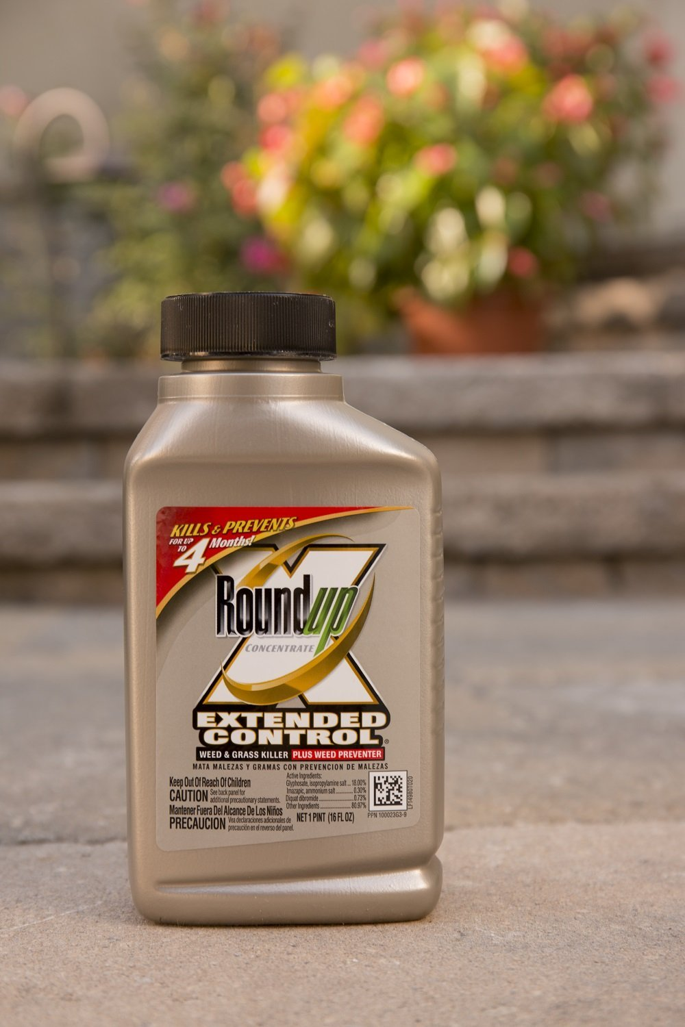 Amazon.com : Roundup Extended Control Weed and Grass Killer Plus ...