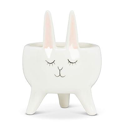 "Abbott Collection 27-MINIKIN-866 Sm Rabbit Planter-4.5"" H, White: Home & Kitchen"