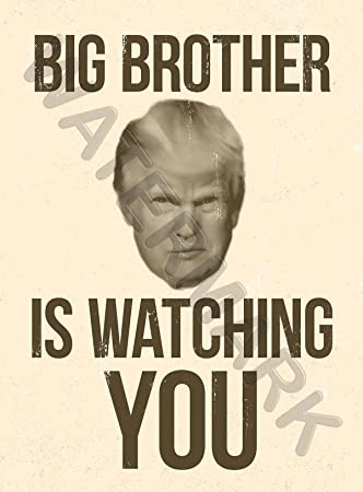 Image result for big brother poster 1984