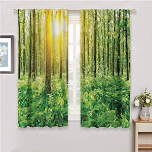 DIMICA Curtain Panels Woodland Forest Springtime Freshness Theme Foliage Sunbeams Sunrise Nature View Scene Print Patio Door Curtains Living Room Decor W63 x L72 Inch Green Yellow