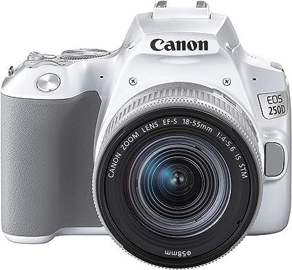 Canon Eos 250d Digitalkamera Mit Objektiv Ef S Kamera
