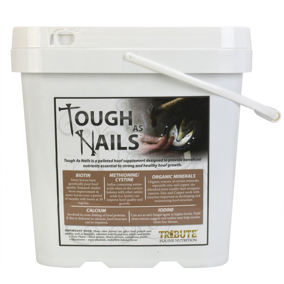 Tribute Equine Nutrition Tough As Nails 11lbs Pelleted Hoof Supplement Bucket (1) by Tribute Equine Nutrition