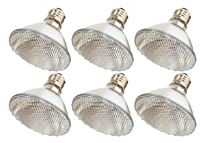 Pack Of 6 39PAR30/NFL - 39 Watt High Output (50W Replacement) PAR30 Flood Short Neck - 120 Volt Halogen Light Bulbs