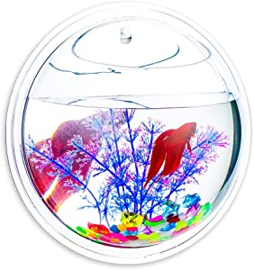 Glasseam Wall Hanging Fish Bowl Mirror Round 6-inches 4 Pcs Acrylic Fish Plant Tanks and Aquariums Vase Pot with Gift for Garden, Home, Outdoor