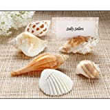 """""""Shells by the Sea"""" Authentic Shell Placecard Holders with Matching Placecards (Set of 6)"""