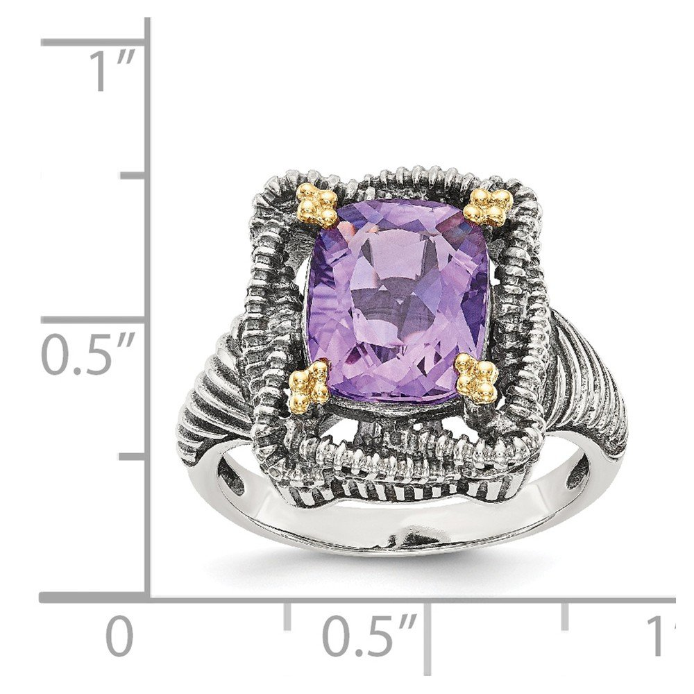 Mia Diamonds 925 Sterling Silver and 14k Yellow Gold Amethyst Ring