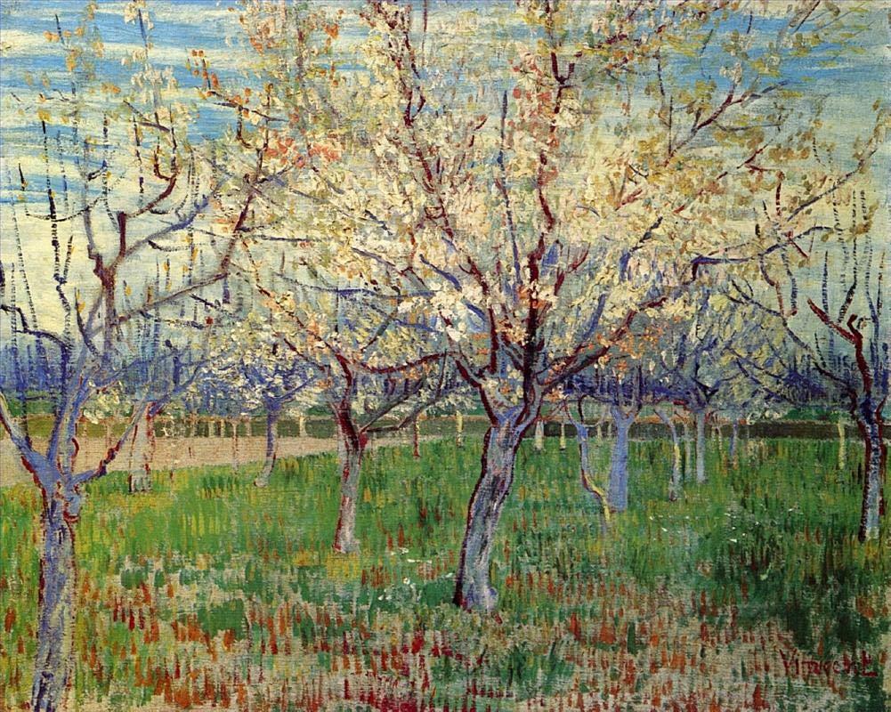 手描き-キャンバスの油絵 - Orchard with Blossoming Apricot 森とジャングル フィンセントファンゴッホ scenery 芸術 作品 洋画 LEPS6 -サイズ15 B07H6CB4DG  48 x 72 インチ