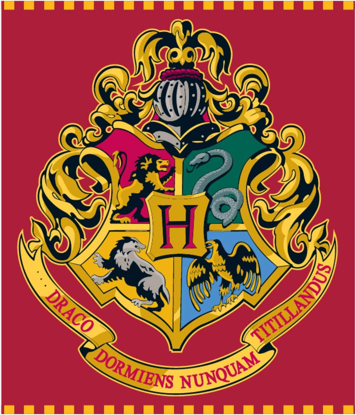 Harry Potter Manta de Forro Polar para niños, 120 x 150 cm: Amazon ...