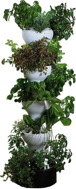 Amazon Com Foody 8 Vertical Hydroponic Home Garden Enjoy Fresh Herbs Vegetables Edible Flowers All Year Long Indoor Outdoor Garden Outdoor