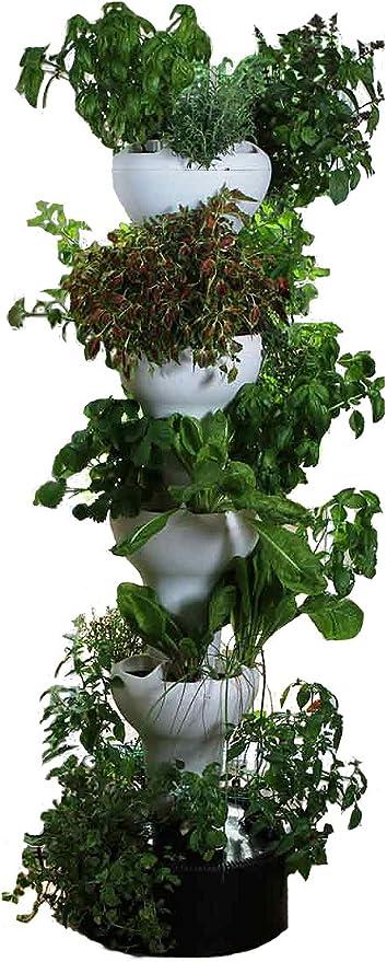 foody 8 vertical casa jardín hidropónico – disfrutar de hierbas frescas, verduras, comestible flores durante todo el año – uso en interiores/al aire libre: Amazon.es: Jardín
