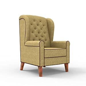 Forzza Siena Wing Chair Oak Brown Chenille with Dark Brown Piping