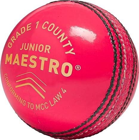 Gunn & Moore Cricket Maestro Grado 1 pelota Condado Inglés piel ...