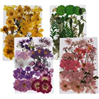 Flameer 152Pcs Real Pressed Dried Flowers Floral for DIY Epoxy Resin Jewelry Arts Crafts