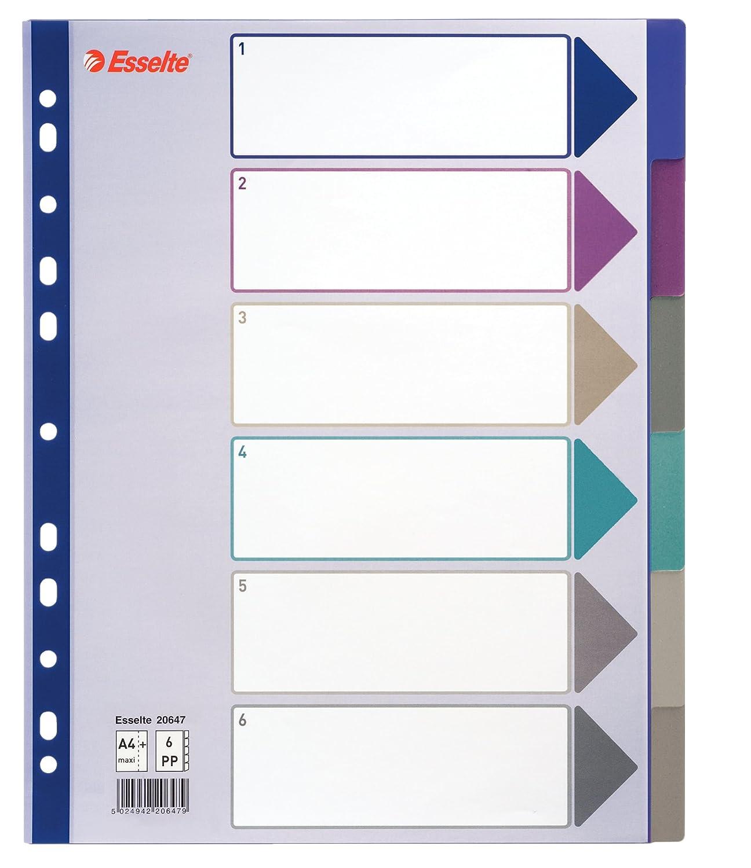 Esselte Rubrica numerica, Formato A4 Maxi, Rinforzo in mylar, Polipropilene, Multicolore, 20649