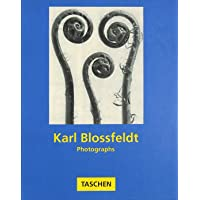 Karl Blossfeldt: Photographs (Albums S.)